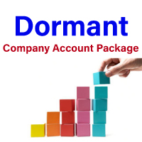 dormant company accounts